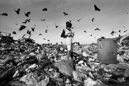 Cendrillon des poubelles